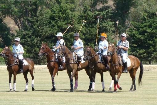 Traumhafte Finca für Pferdeliebhaber in...