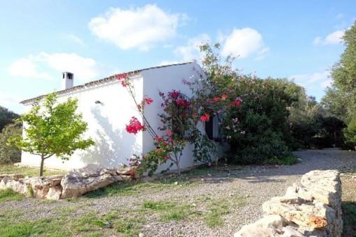 Idyllische Finca mit 2 Häusern in Arcos de la Frontera, Cádiz