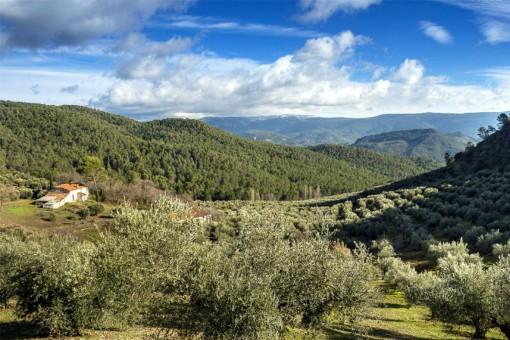 Allein stehende Finca mit riesigem Grundstück in Siles, Jaén