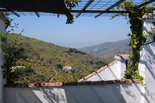 Wunderschöne Aussicht auf die Berge