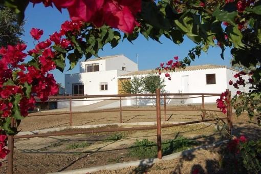 Traumhafte Villa mit Pferdeställen, Pool und wunderschönem Garten