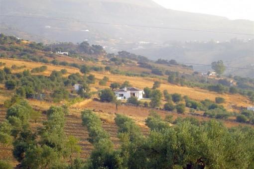Finca mit herrlichem Blick auf die Landschaft und Berge in Tolox