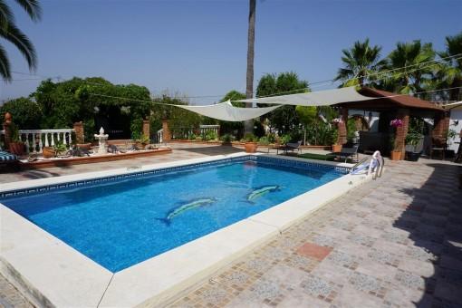 kaufen finca gro es grundst ck landgut eigener pool in alhaurin el grande malaga. Black Bedroom Furniture Sets. Home Design Ideas